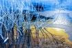 氷reed-1959974_640.jpg